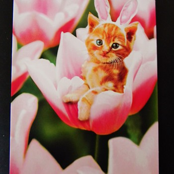 HAPPY EASTER kitty bunny hatching.....CW !!!!   - Animals