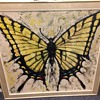 Butterfly painting by Keith Lee