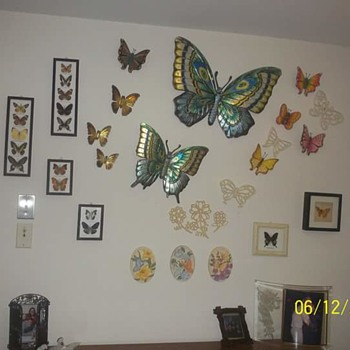 butterfly wall - Animals