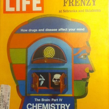 Life Magazine: Football Frenzy and Chemistry of Madness - Paper