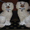 STAFFORDSHIRE WARE ENGLAND ROUGH COAT DOGS