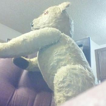teddy bear???? - Dolls