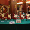 Fender Candy Apple Red, Guitar & Bass collection