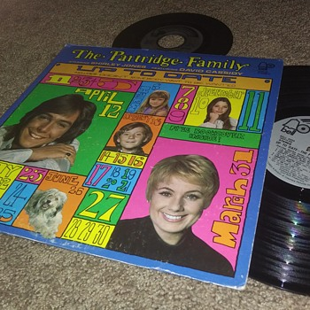 The Partridge Family...On 33 1/3 And 45 RPM Vinyl - Records