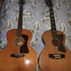 """1960's guild 12 sting (not a 112 or 212)personal favorite,2""""wide nut"""