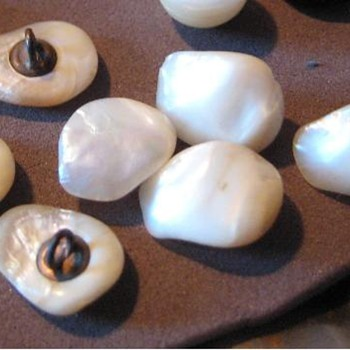 7 mother of pearl buttons - Sewing