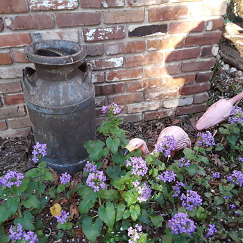an old milk can for the rust garden - Bottles
