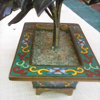 My cloisonne bonsi tree