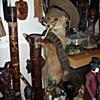 Desert Fox.....Or Not