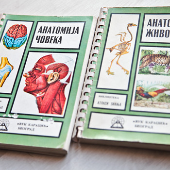 Two Anatomy books - Books