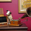 G&T Trade-mark gramophone 1897, with records and storage box.
