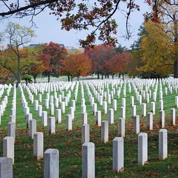 Go in Peace......................................... - Military and Wartime