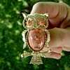 Gerry's Miss Owl Brooch