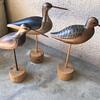 Shore decoy birds