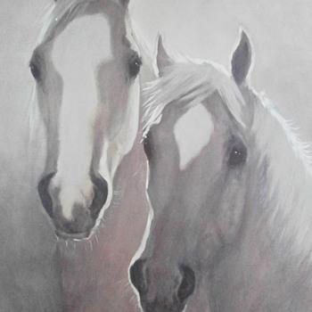 Horse is a mammalian animal - Animals