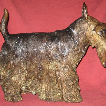 Bronze Scottish (Scottie) Terrier - Animals