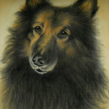 "Joyce Betts, Canadian, "" Dog ""Pastel, 1984. - Fine Art"