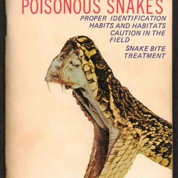 Guide to Florida - Poisonous Snakes - Books