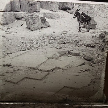1800's Glass Photo Slides - Egyptian Expedition - Pyramid of Giza - Photographs