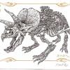Emek Dino Card