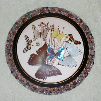 Butterflies from Brazil Wall Plaque - Animals
