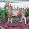Horse Hair Rocking Horse.... late 1800's German made?