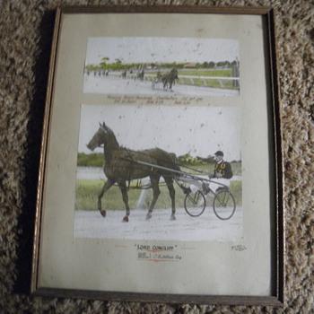 Horse racing photo  - Photographs
