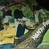 Tommy James And The Shondells...On 33 1/3 RPM Vinyl