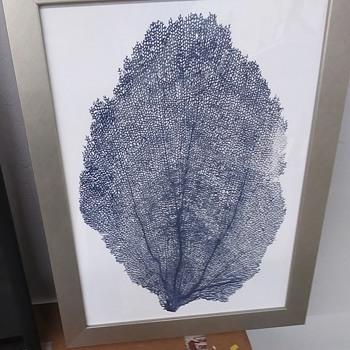 Art print - Fine Art