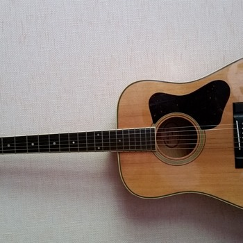 Madeira A-30MS (circa 1980) - Guitars