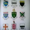 Irish Families- Their names, arms and orgins