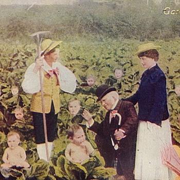 A Garden of Love - Postcards