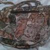 My cat purse