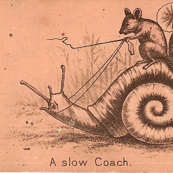 A Slow Coach - What the heck is this? - Paper