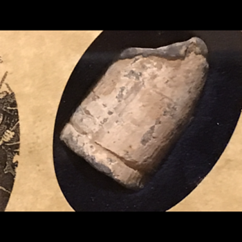 Casualty Causing Civil War Bullet? - Military and Wartime