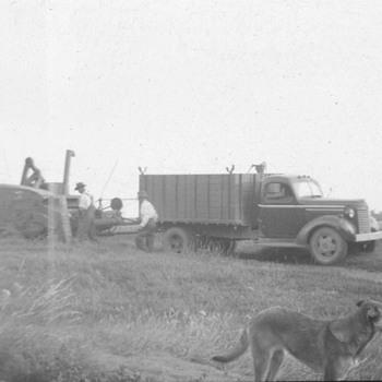 Truck & Combine - Photographs