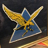 Unknown WW2 Patch in Frame. Can Anyone Help With Identification?