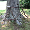 1890s Men's and Women's Bicycles- What are these?