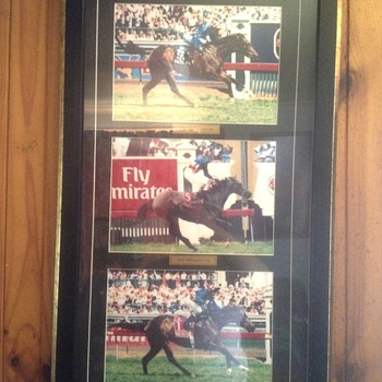 Makybe diva picture