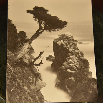 Genuine Moonlight Photography by Lewis Josselyn - Point Lobos, California - Fine Art