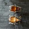 Another one! Beetle bug !!!