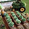Dollhouse vegetable garden (fantasy garden versus reality garden)
