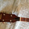 Prairie 5 string banjo