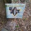 Mr. Vincent Damon Furnier..On 33 1/3 RPM Vinyl