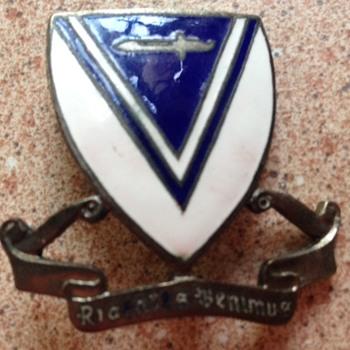 Army unit insignia pin?