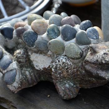 Pebble-encrusted alligator?? - Animals