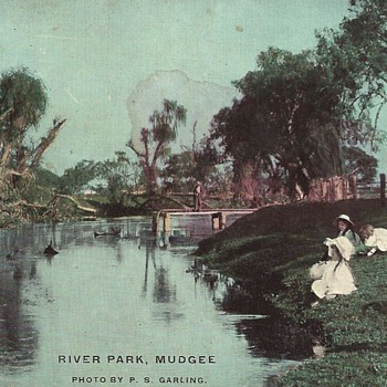 RIVER PARK MUDGEE - THE POST ARRIVED! - Postcards