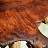 Redwood Burl Table I Refinished this Week