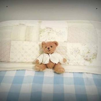 I need a teddy bear expert!!!