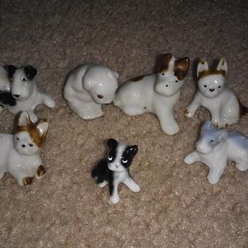 Tiny dogs  - Animals